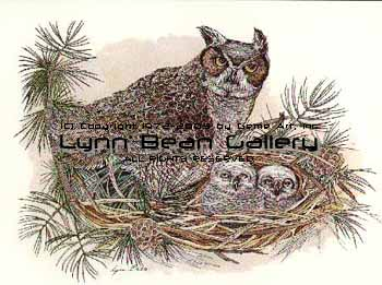 Great Horned Owl With Babies.